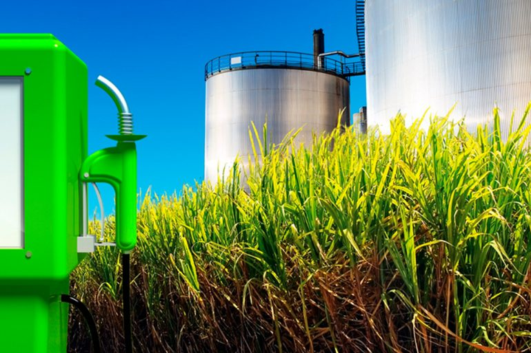 Bio-etanol: Como resultado al convertir el bagazo generado por la valorización de residuos BPP denominada Value+, durante el proceso de producción del bio-etanol y de los residuos orgánicos generados en la obtención de su materia prima.